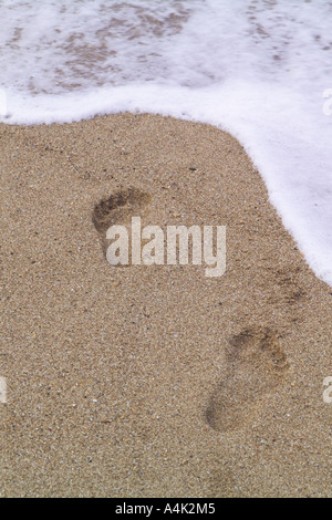 Foot prints in the sand on a Puerto Rican beach. - Stock Image