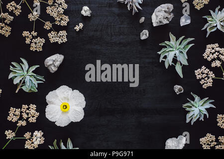 Matilija Poppy with Quartz and Native Plants, arranged with Space for Copy - Stock Image