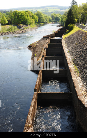 The fish ladder on the River Tummel, Pitlochry, Perthshire - Stock Image