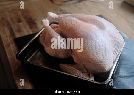 A big organic, freerange turkey squeezed into a baking tray. 9.5 Kilos. - Stock Image