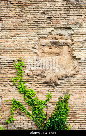 Olympia, Greece. The site of the Olympic Games in classical times. Hole in the wall at the Roman Baths. - Stock Image