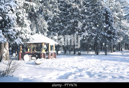 wooden gazebo in the forest in winter sunny day - Stock Image