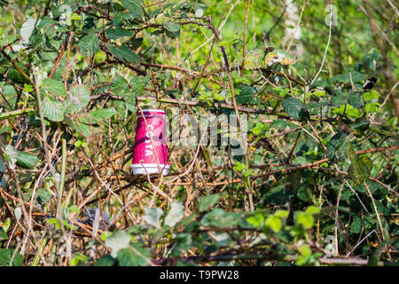 Costa Coffee paper disposable cup as litter thrown away into undergrowth - Stock Image