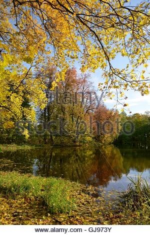Autumn Park on the estate of Count I. I. Vorontsov-Dashkov. This Park is located  in the village of Bykovo, Ramensky - Stock Image
