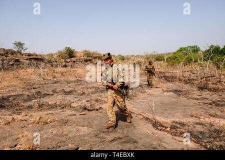 Officers and men of 1 Scots, a British Army infantry battalion, observe and advise Nigerian army soldiers during training in Burkina Faso: Feb 2019 - Stock Image