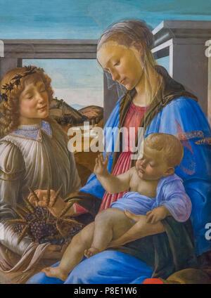 Virgin and Child with an Angel, Sandro Botticelli, 1470's, Isabella Stewart Gardner Museum, Boston, Mass, Massachusetts, North America, US, USA - Stock Image
