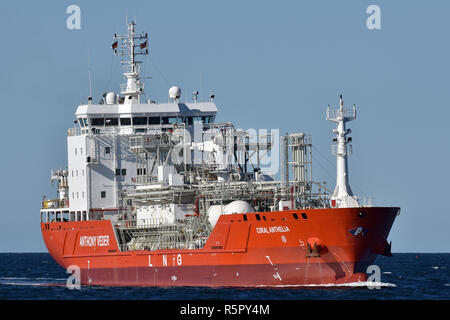 LNG Tanker Coral Anthelia - Stock Image