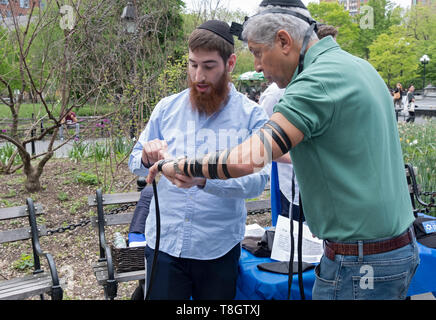 A Chabad rabbi helps an older man put on tefillin at the Israel Independence Day celebration in Washington Square Park, In New York City. - Stock Image