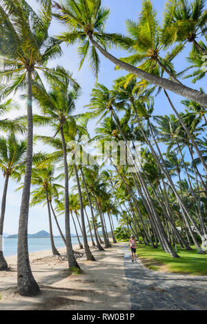 Person walking on a path under bent palmtrees along the beach, Palm Cove, Cairns Northern Beaches, Far North Queensland, QLD, FNQ, Australia - Stock Image