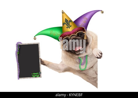 Mardi gras carnival pug dog with harlequin jester hat, venetian mask and decorated blackboard sign, isolated on - Stock Image