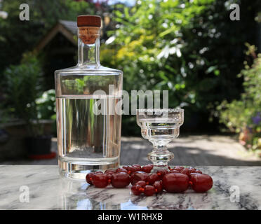 Vodka and Amber beads from Lithuania - Stock Image