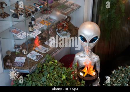 Amsterdam Coffee Shop - Stock Image