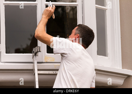 Male painter on ladder paints shop window frame white - Stock Image
