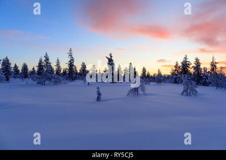 Finland, Lapland province, Inari, Saariselka - Stock Image