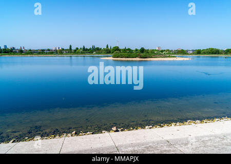 An Egyptian goose on the shore line of Warwick Reservoir East, Walthamstow Wetlands project, London, England - Stock Image
