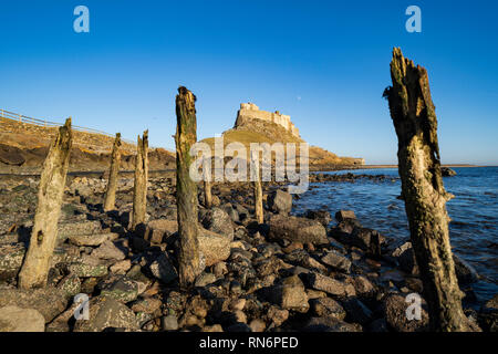 View of Lindisfarne Castle after renovations completed in February 2019, on Holy Island in Northumberland , England, UK - Stock Image