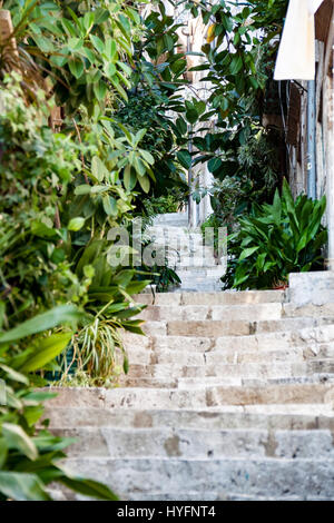 Stone stairway in Old City, Dubrovnik - Stock Image