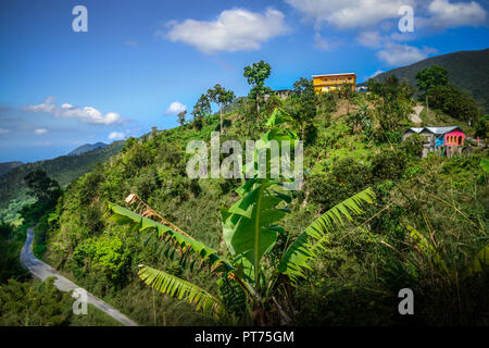 Jamaica, Blue Mountains , local life up high in middle of green, wild nature - Stock Image