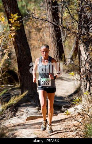 Runners in the 2015 Pikes Peak Road Runners Fall Series - Stock Image