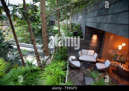 18.04.2019, Singapore, , Singapore - Terrace of the Changi Lounge overlooking the Forest Valley in the new Jewel Terminal at Changi International Airp - Stock Image