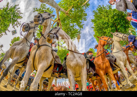 Horsemen, April fair, Seville, Spain. - Stock Image