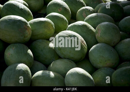 Watermelons for sale at market, Iran - Stock Image