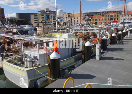 Vessels including crayfishing boats tied up in Constitution Dock, Hobart, Tasmania, Australia. No MR or PR - Stock Image