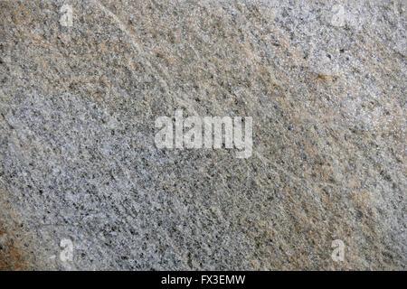 Freestone Gneiss. - Stock Image
