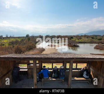 Birdwatching British tourists expats Bird watching from a hide Guadalhorce River Estuary Natural Area in Malaga Costa del Sol, Spain in February. - Stock Image