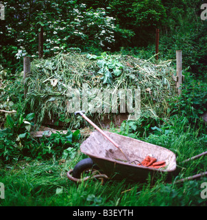 Compost heap of grass cuttings, wheelbarrow, fork and gardening gloves in a self-sufficient garden Brecon Wales - Stock Image