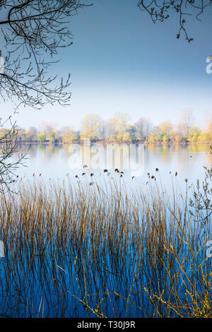 A rain-filled sky on an early Spring morning on one of the lakes at Cotswold Water Park - Stock Image
