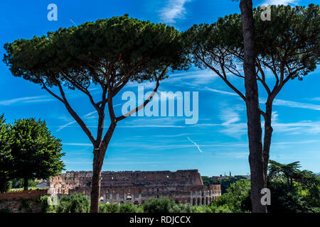 Rome, Italy - 24 June 2018: The Great Roman Colosseum (Coliseum, Colosseo), also known as the Flavian Amphitheatre - Stock Image