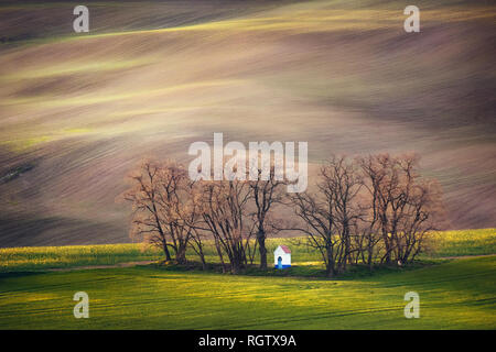 Lines and waves with trees and chapel in the spring in area known as Moravian Tuscany, South Moravia, Czech Republic - Stock Image