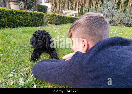A teenaged boy plays with his puppy in the garden - Stock Image