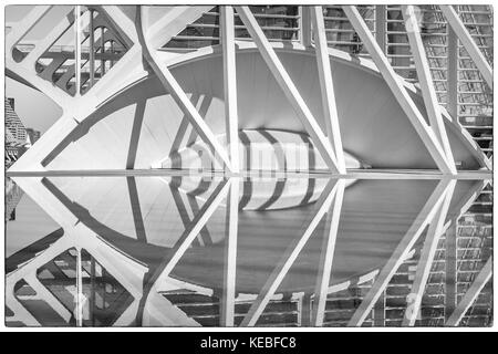 A reflection of the end of El Museu de les Ciències Príncipe Felipe in the City of Arts and Sciences, - Stock Image