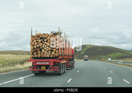 Timber lorry on A74(M) motorway, Scotland, UK - Stock Image