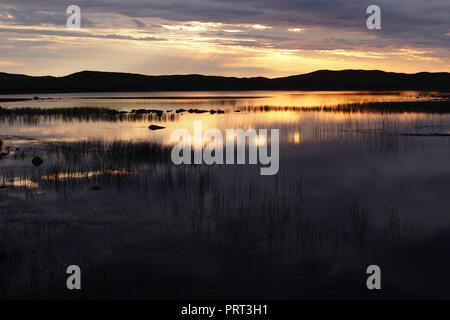 A sunset view over a small loch near Achnahaird beach, Scotland with foreground water plants - Stock Image