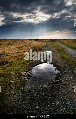 Bodmin moor after storm,dark sky sun breaking through on to granite stones and puddles on Bodmin moor, - Stock Image