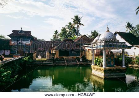 Pond of Shree Janardhana Temple on Ammankovil Road, Thamaraparambu, Fort Kochi, Kochi (Cochin), Kerala, southern - Stock Image