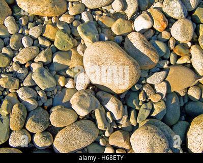 Dry River Stones at Capilano River, BC Canada - Stock Image