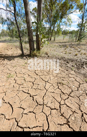 Cracked soil during a drought near Injune, South West Queensland, QLD, Australia - Stock Image