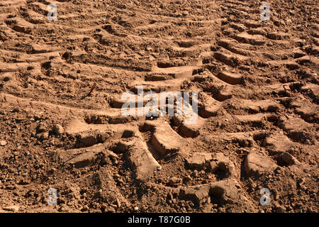tractor wheel tracks in yellow clay on field, deep wheel tracks in dried soil from a field after harvest - Stock Image