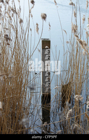 Water gauge at Bedfont Lakes Country Park - Stock Image