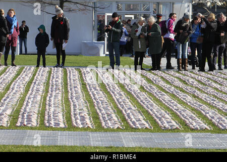 London's Queen Elizabeth Olympic Park, Stratford, London - 11 November  2018: People seen during the remembrance day memorial service at Elizabeth Olympic Park, London around 72,396 shrouded figures created by artist Rob Heard in memory of the fallen Commonwealth soldiers at Somme who have no known grave. The installation is made up of hand-sewing calico shrouds and bound over small figures by artist Rob Heard. Credit: David Mbiyu /Alamy Live News - Stock Image