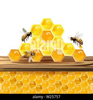 beehive honeycomb bee food    honey  natural   illustration   sweet - Stock Image