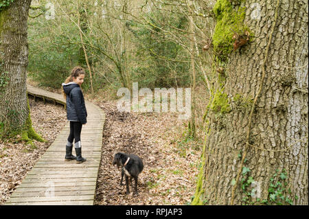 Girl, ten years old, standing on a wooden boadwalk through a forest reserve walk. - Stock Image