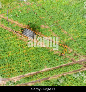 Vertical aerial view with the drone of a huge hose reel for irrigation of arable land. - Stock Image