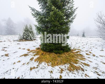 Sparse snow in countryside with parts of field and grass still uncovered - Stock Image