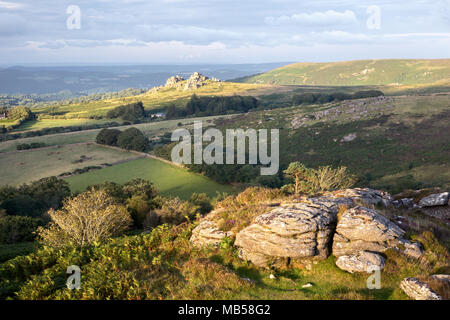 Early morning light on Honeybag tor with views towards Hound tor Dartmoor national park Devon Uk - Stock Image