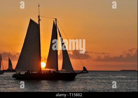 Sunset sail out in waters just off the docks and marina, at golden sunset, near Mallory Square on Key West, Florida Keys, Florida, USA - Stock Image